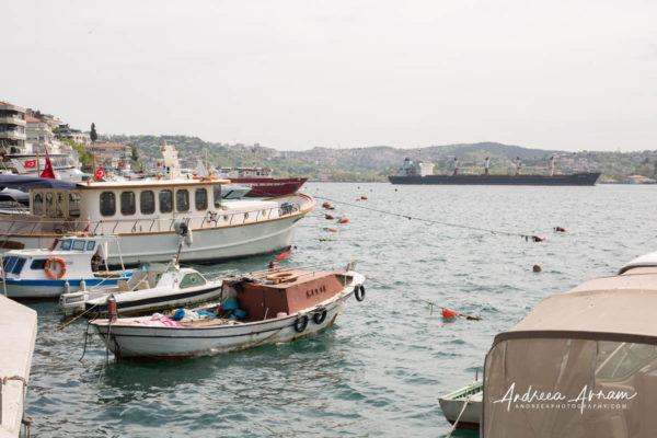 Bosforus_Turkey_May 01, 20195