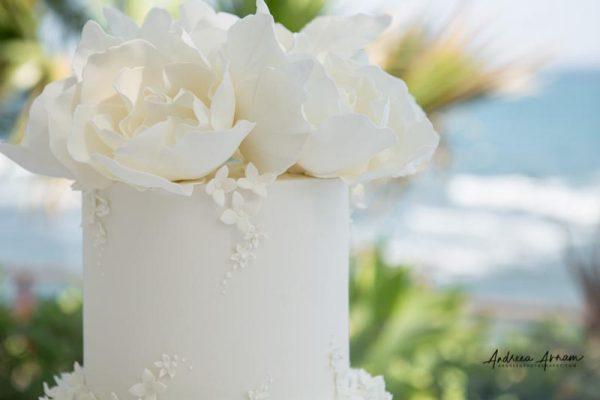 El_Oceano_Mijas_Wedding (66)