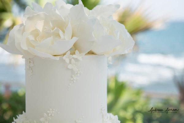 El_Oceano_Mijas_Wedding (66)_1