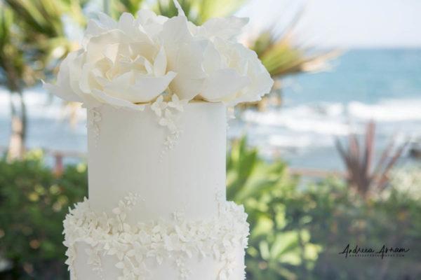 El Oceano Wedding Photographer