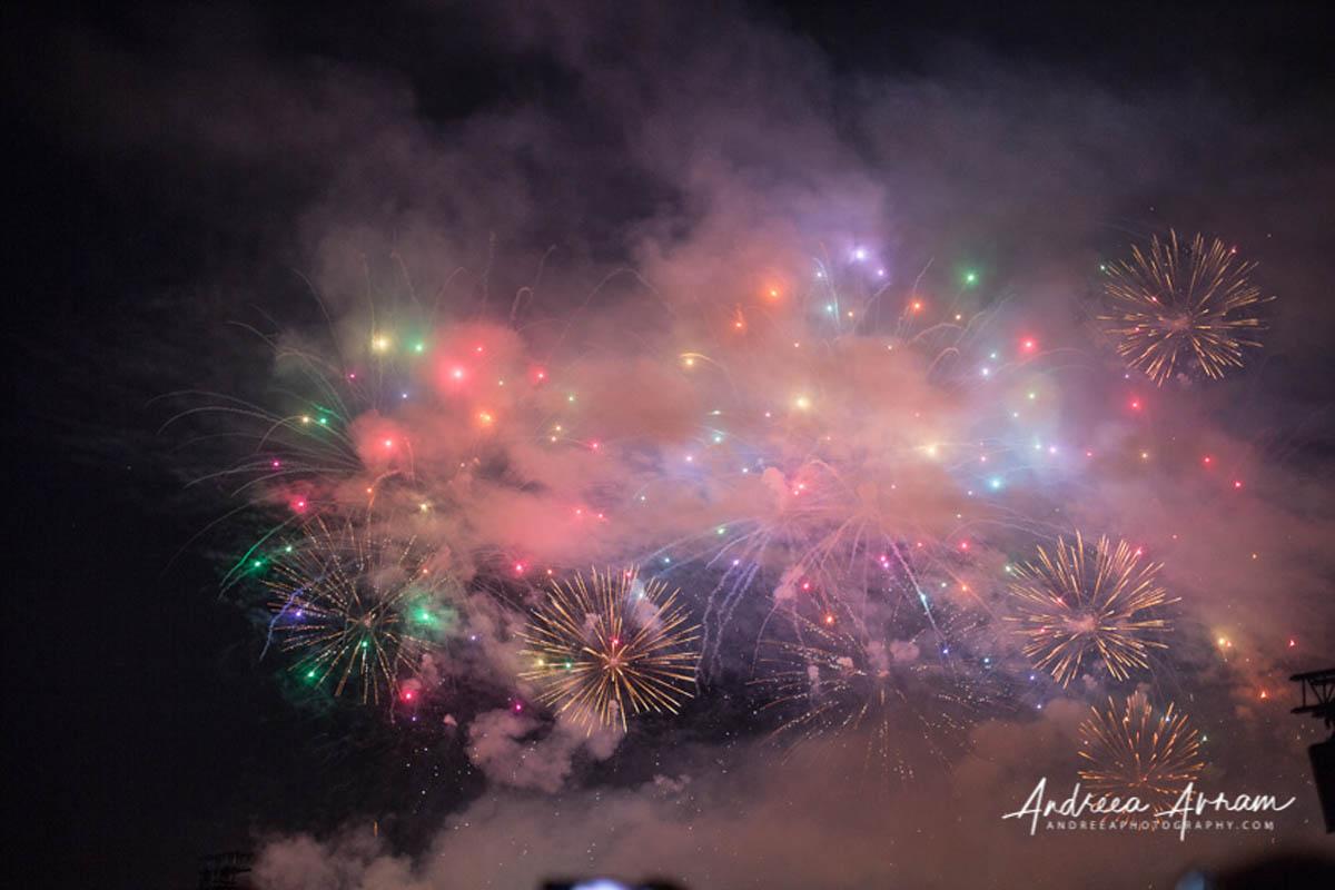 Zurich Fascht Fireworks
